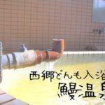 西郷隆盛も入浴した指宿市の鰻温泉と観光レポート